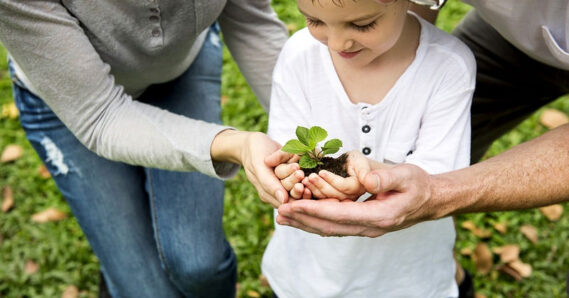Protect And Improve Our Environment With These Ten Green Strategies